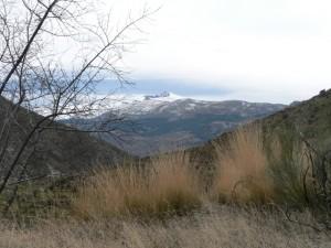 View Veleta