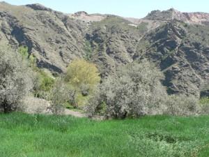 Trevélez Valley in the Alpujarras