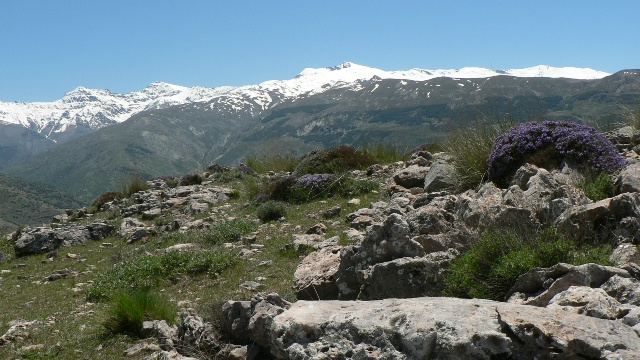 View of the Sierra Nevada from Cerro el Calar, near Guejar Sierra